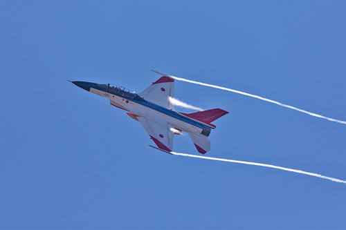 F21013