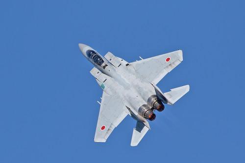 F1519_2